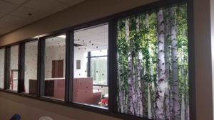 Custom Graphic Film Improves Privacy & Decor at Beaumont Hospital 4