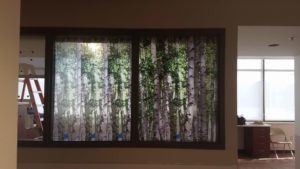 Custom Graphic Film Improves Privacy & Decor at Beaumont Hospital 3