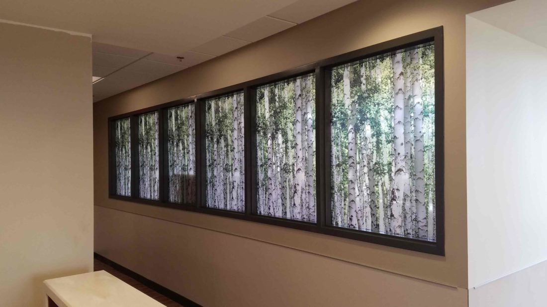 Custom Graphic Film Improves Privacy & Decor at Beaumont Hospital 2